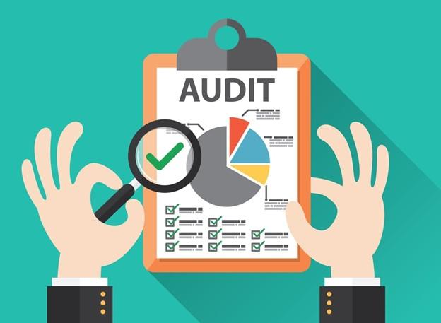 Governance Audit feature